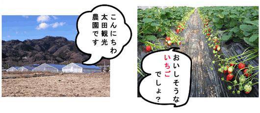 太田観光農園